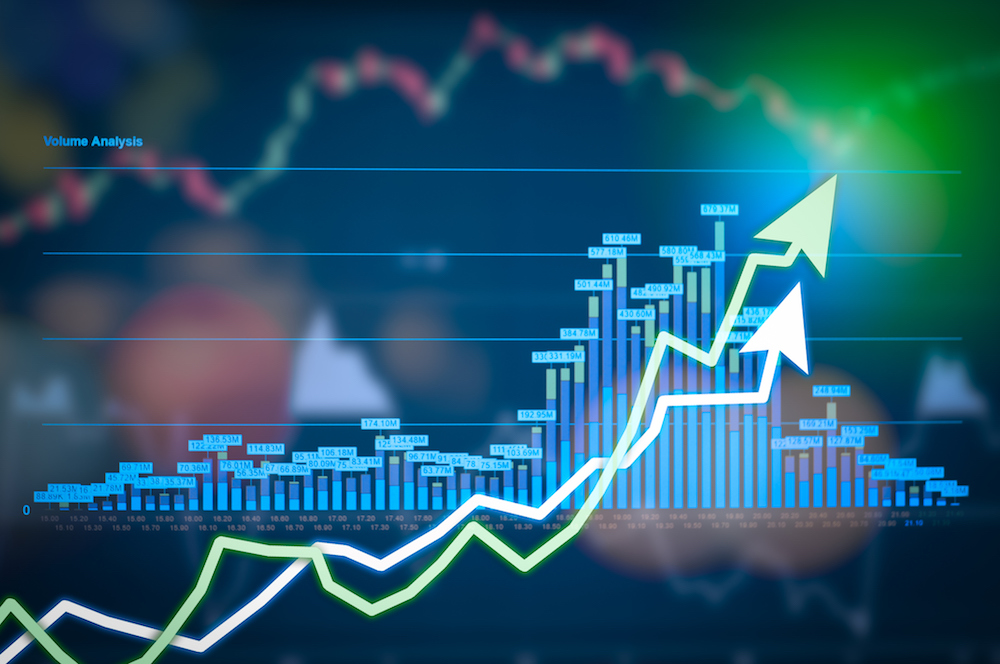 New to investing? Our top 10 investments in 2019!